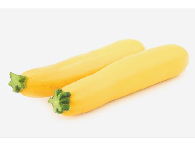 Sandy WIS yellow cylindrical zucchini